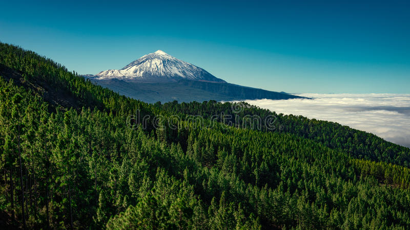 Mount Teide Tenerife. Mount Teide and Teide National Park, Tenerife, Canary Islands, Spain stock images