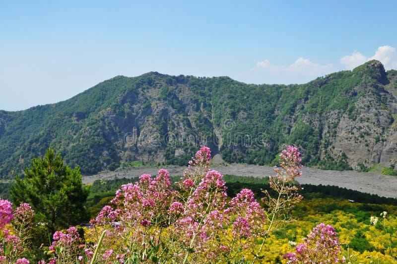 Mount Vesuvius. In the distance in summer stock photo