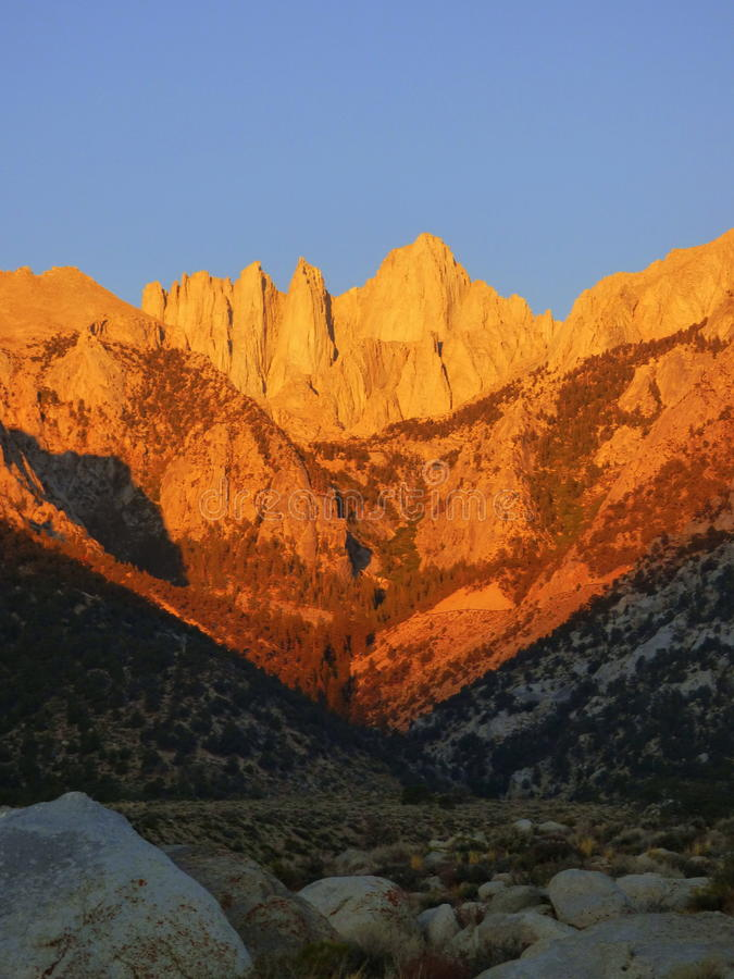Mount Whitney at sunset. Mount Whitney is the highest summit in the contiguous United States and the Sierra Nevada, with an elevation of 14,505 feet 4,421 m.[5] stock photos