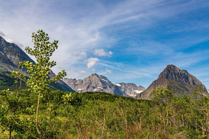 Mount Wilbur en Swiftcurrent Mountain stock afbeelding