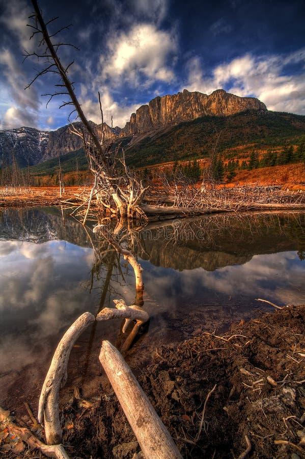 Mount Yamnuska stock photo