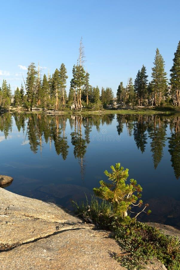Mountain湖反射 库存图片