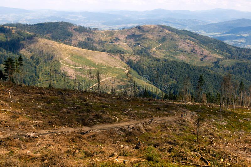 Download Mountain stock image. Image of clear, forest, hill, nature - 14598691