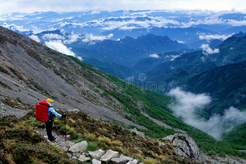 On the mountain stock photography