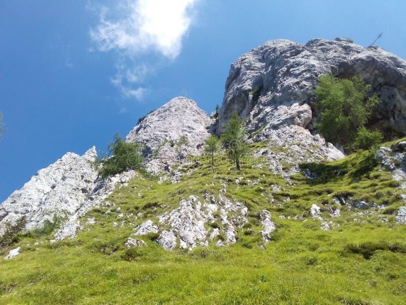 Mountain2 obrazy royalty free