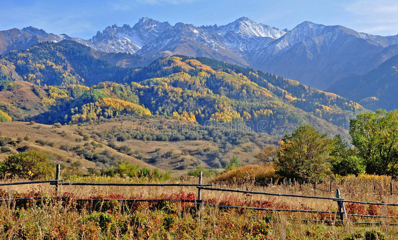 Mountain autumn in the north tien shan royalty free stock photo