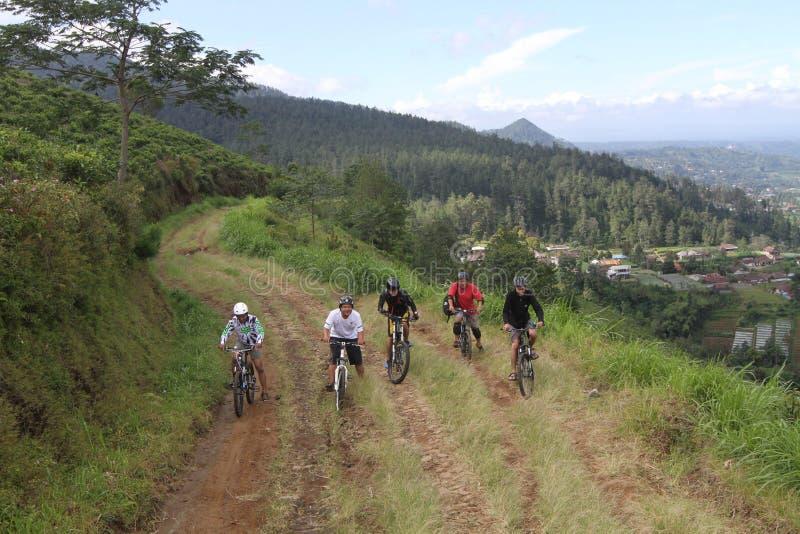 Mountain bike fotografia de stock