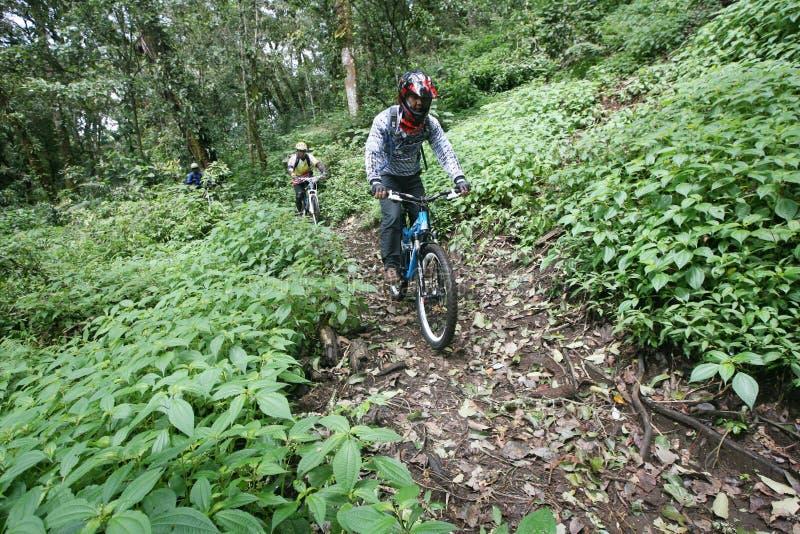 Mountain bike foto de stock royalty free