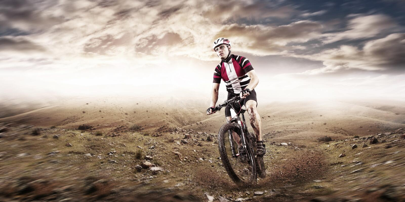 Mountain Bike cyclist riding single track stock photography