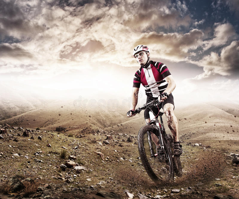 Mountain Bike cyclist riding single track royalty free stock image