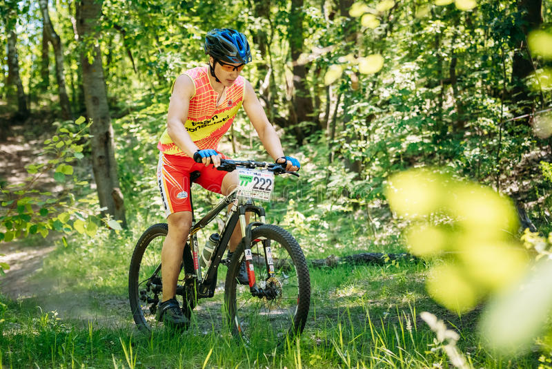Mountain Bike cyclist riding track at sunny day royalty free stock photo