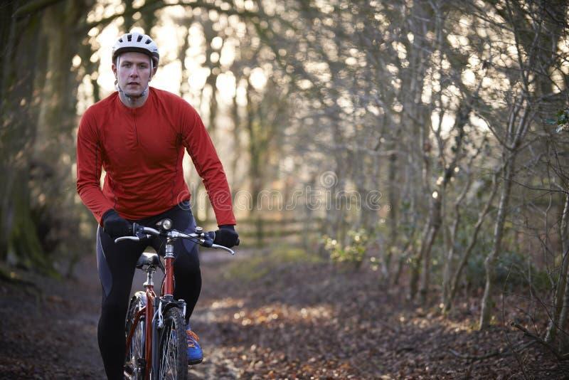 Mountain bike di guida dell'uomo attraverso i terreni boscosi fotografia stock