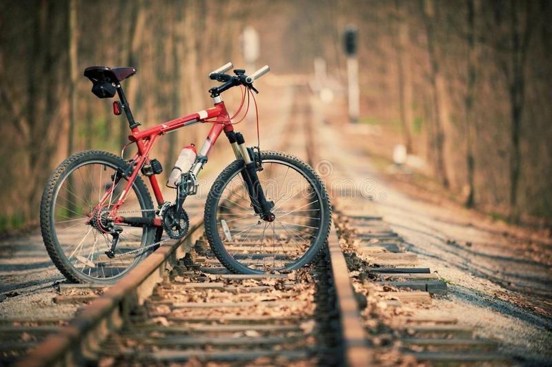 Mountain bike in the forest on rails. No people royalty free stock photos