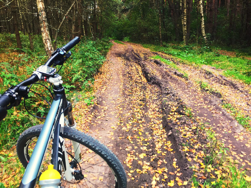 Mountain bike on forest trail stock photo