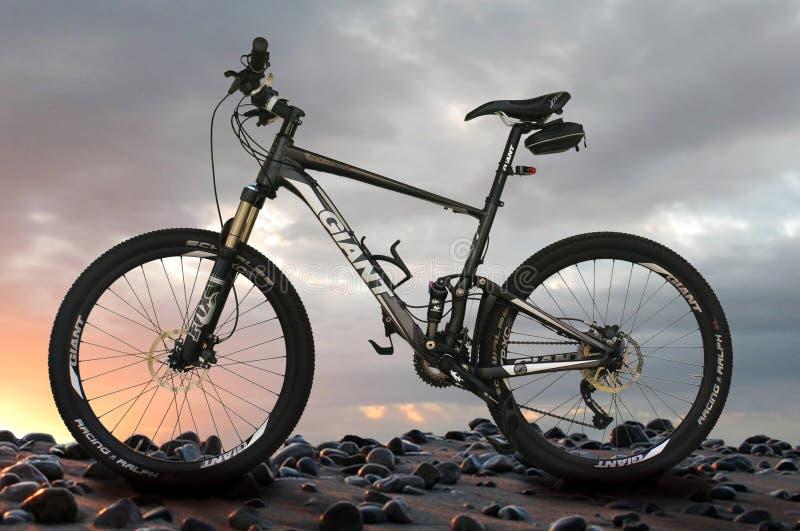 Mountain bike gigante fotografia de stock