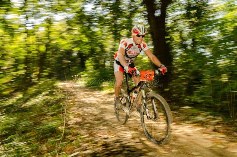 Mountain bike race royalty free stock photo