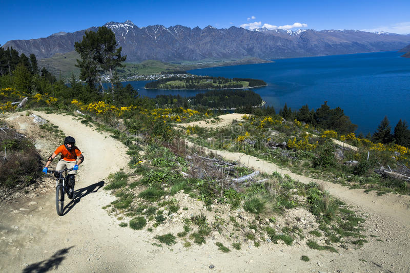 Mountain bike rider on bike path in Queenstown. New Zealand royalty free stock photo
