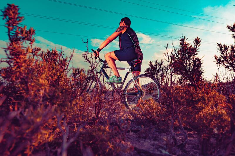 Mountain bike.Sport and healthy life stock image