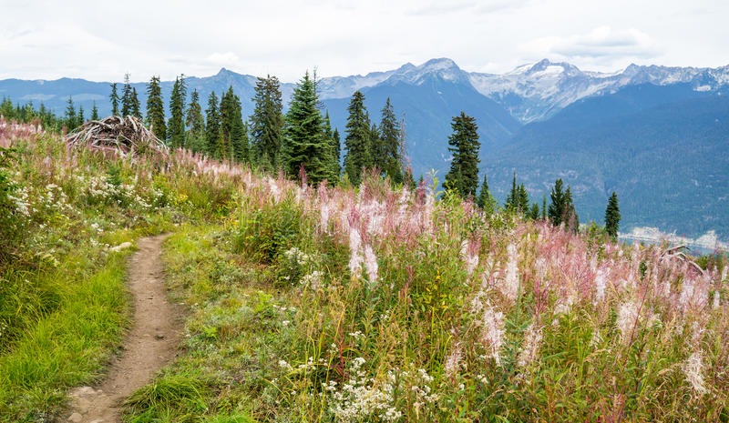 Mountain bike trail stock images