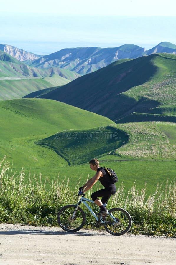 Mountain biker royalty free stock images