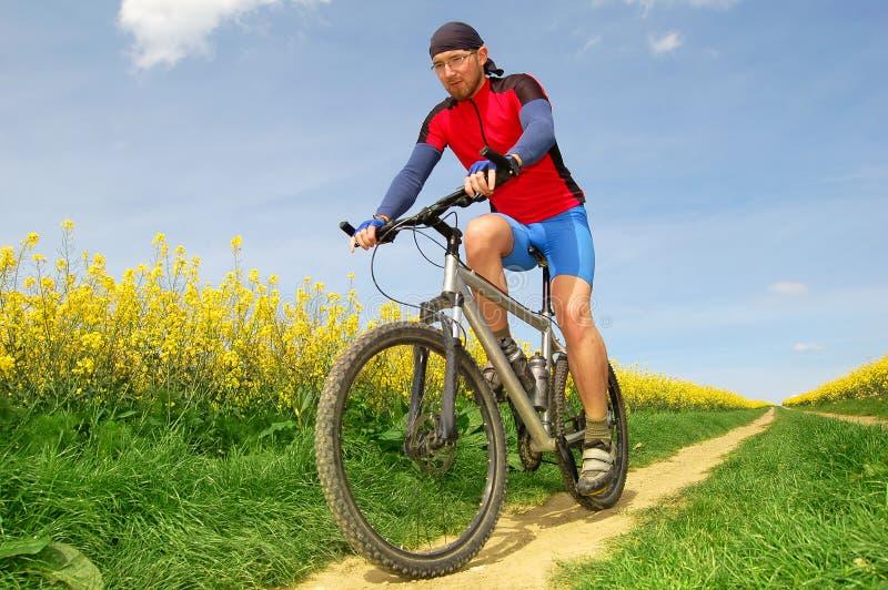 Download Mountain biker stock photo. Image of speeding, cyclist - 17416272