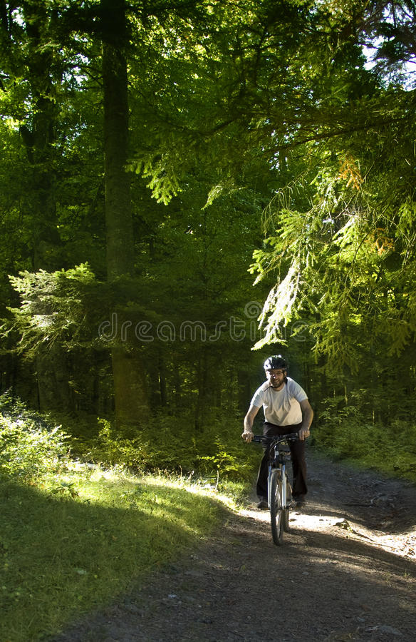 Download Mountain biker stock photo. Image of riding, trail, outdoor - 21603062