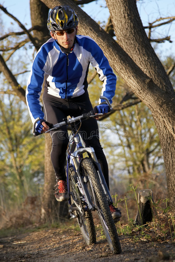 Mountain biker. A male mountain biker on a single track trail in the woods royalty free stock image