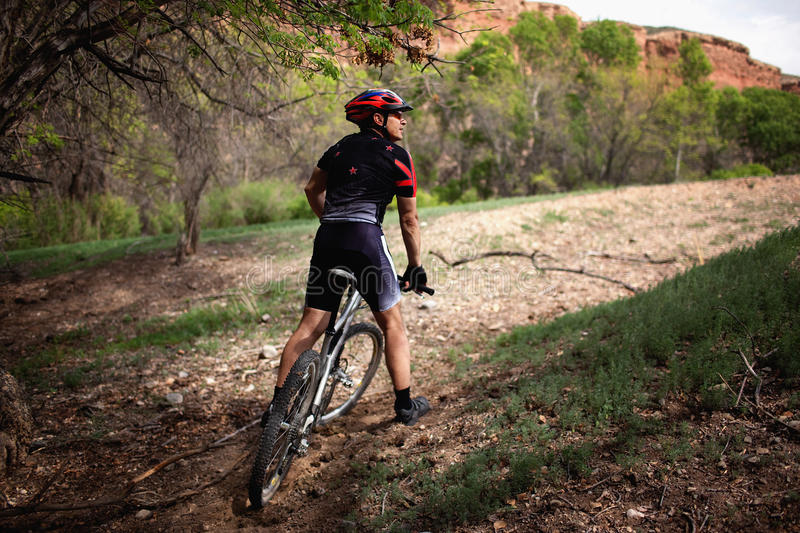 Mountain biker in canyon stock images