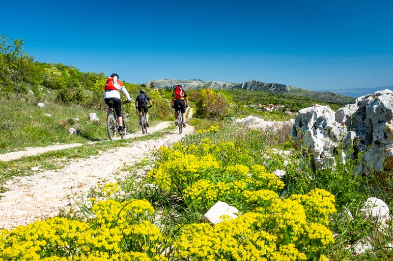 Mountain biker driving in Istria to mountain Sisol, Ucka Park stock images
