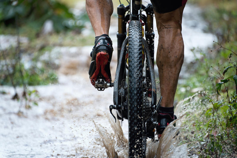 Mountain biker driving royalty free stock images