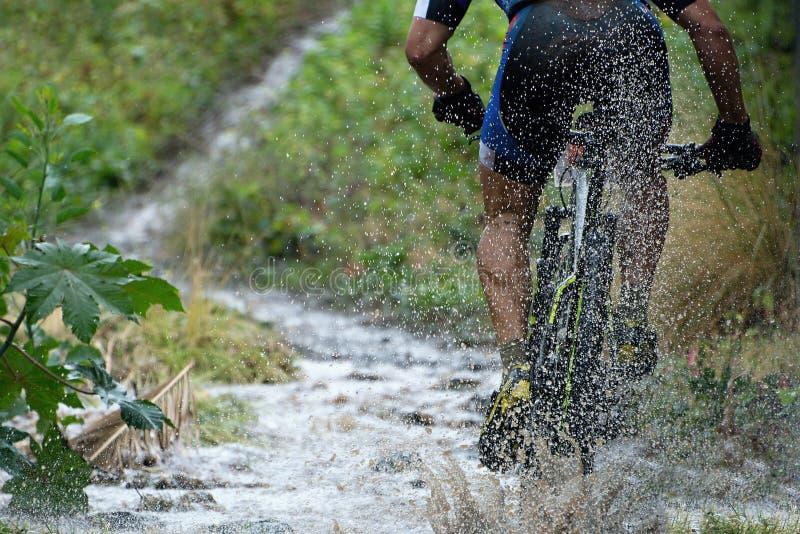 Mountain biker driving royalty free stock photos