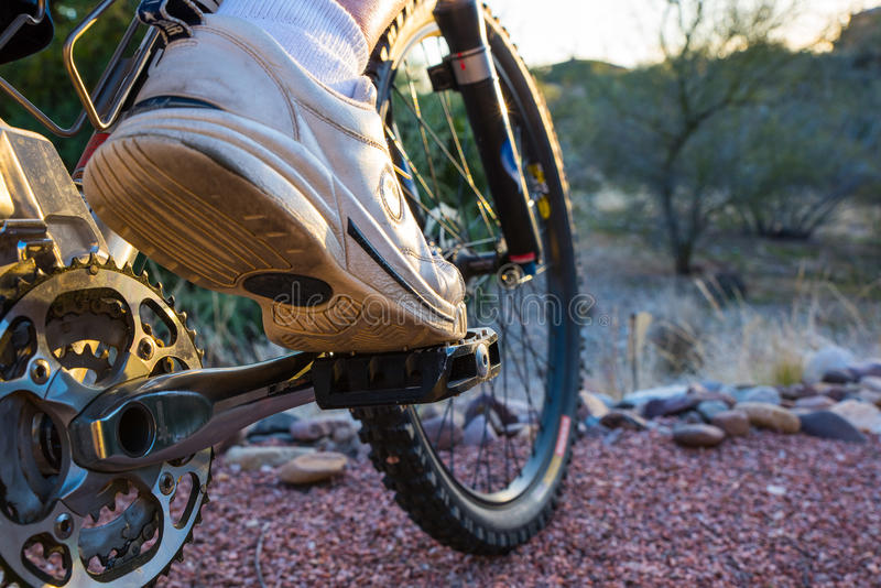 Mountain Biker Ready to Depart. On a morning adventure stock photo
