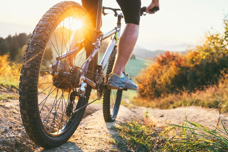 Mountain biker ride down from hill. Close up wheel image. Active stock photography