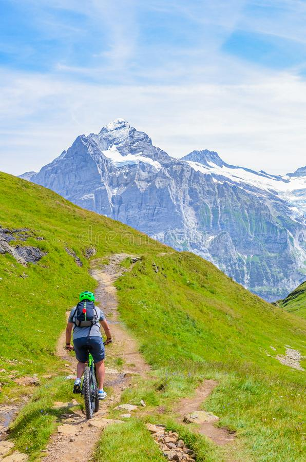 Mountain biker riding in amazing summer Alpine landscape. Snowcapped mountains in the background. Photographed on the trail from royalty free stock photo