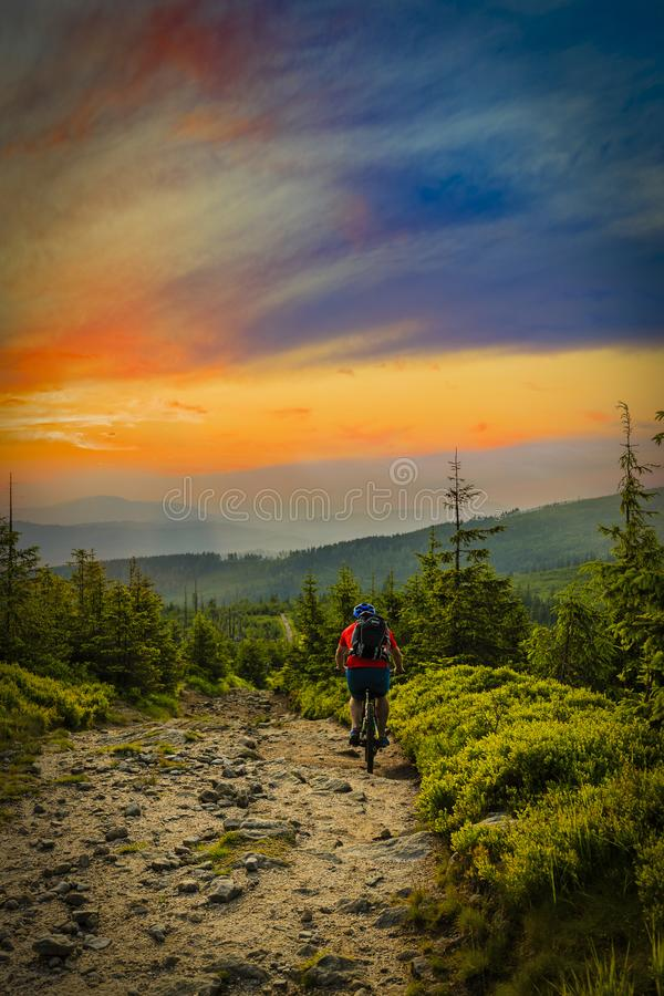 Mountain biker riding at sunset on bike in summer mountains fore stock photos