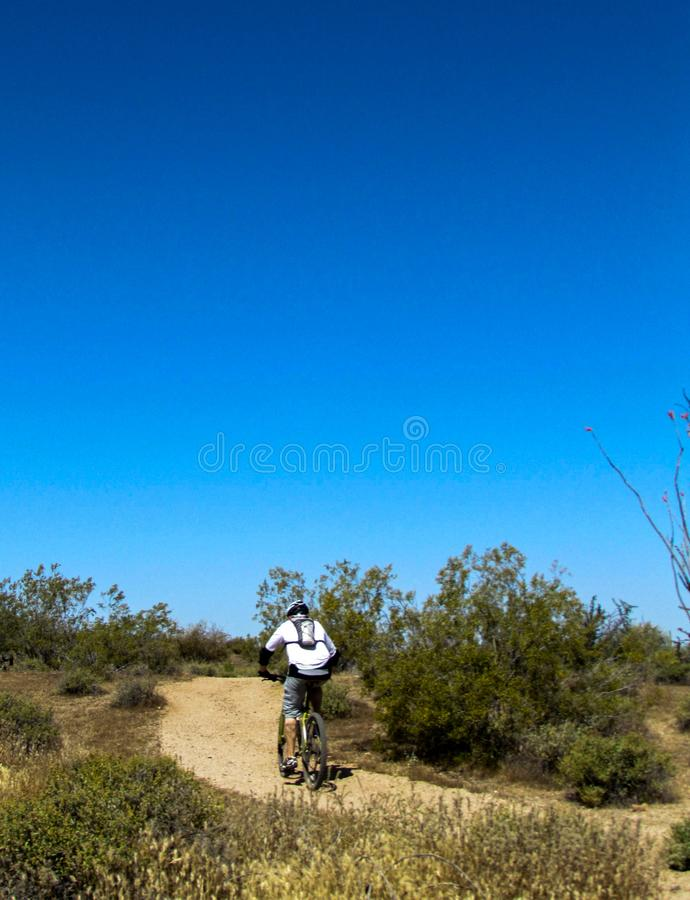 Mountain Biker riding uphill royalty free stock photos