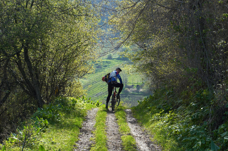 Mountain biker on rural road royalty free stock image