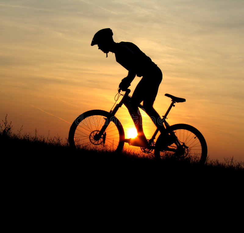 Free Mountain Biker Silhouette Royalty Free Stock Images - 1817199