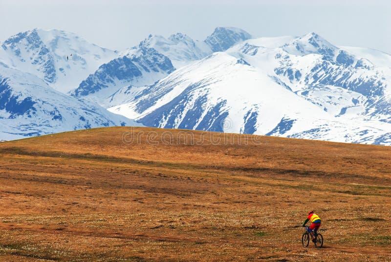 Mountain biker and snow peaks royalty free stock photos