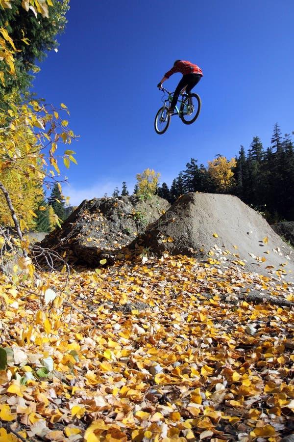 Free Mountain Biker, Whistler Stock Photo - 23423210