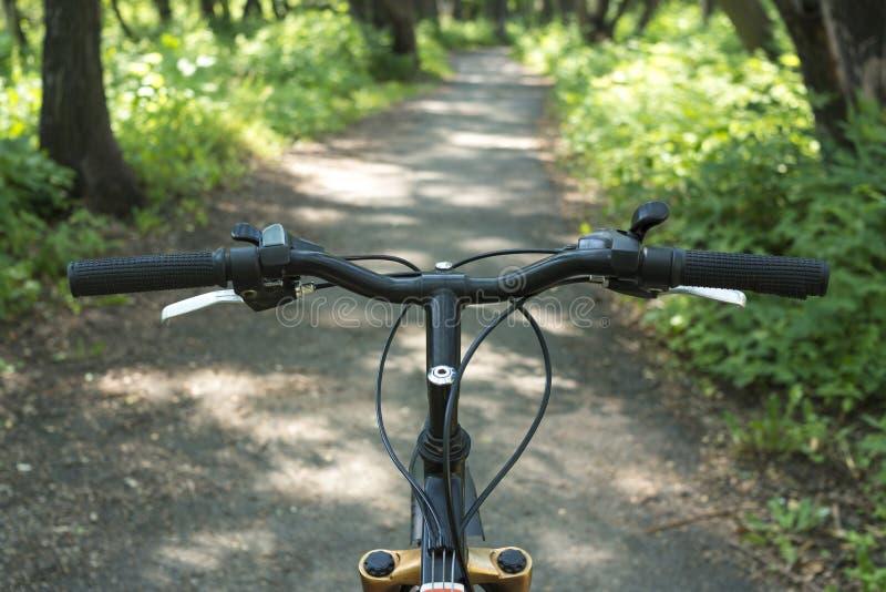 Mountain biking down hill. led outdoor sports royalty free stock photo