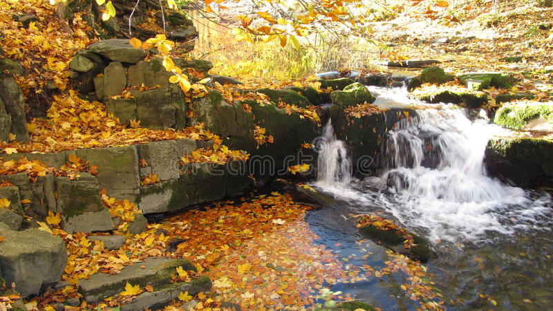 Mountain brook in autumn stock photography