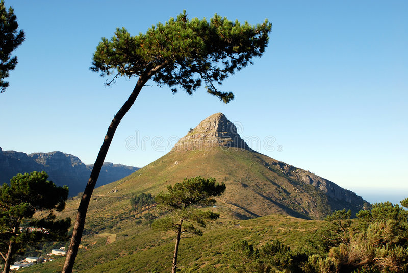 Mountain in Capetown royalty free stock images