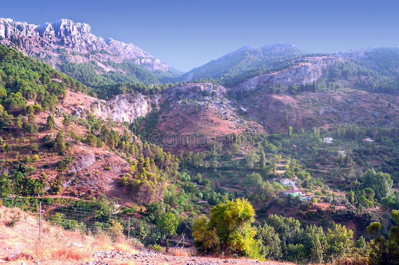Mountain of Cazorla. Mountain with trees of Cazorla it's situated in the province of spain called Jaen, it´s a sunny day royalty free stock photo