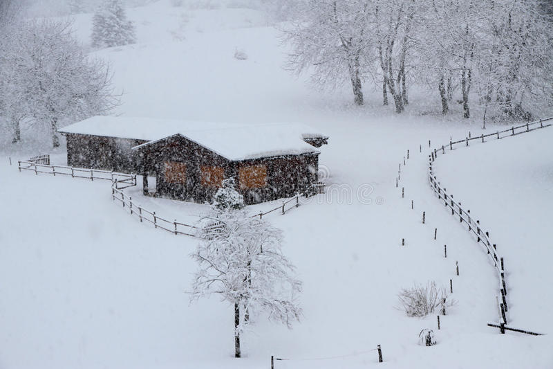 Mountain chalets made of wood. Covered with snow during a winter snowstorm stock photo