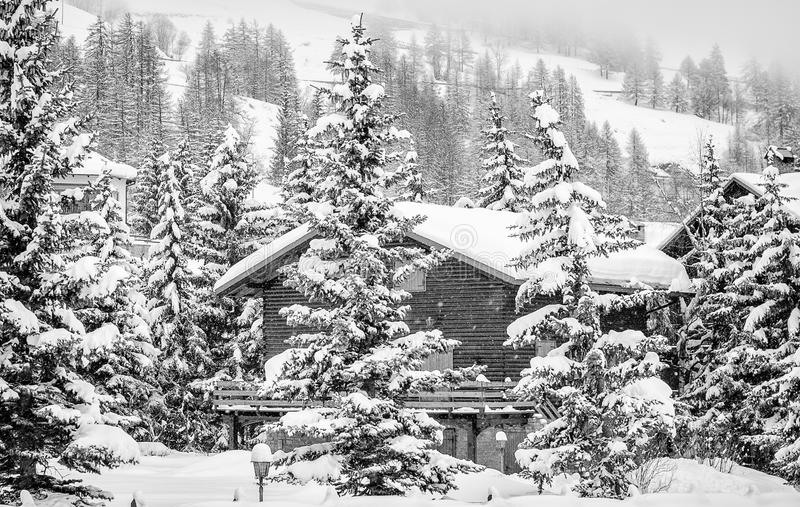 Mountain chalets between snowy trees stock image