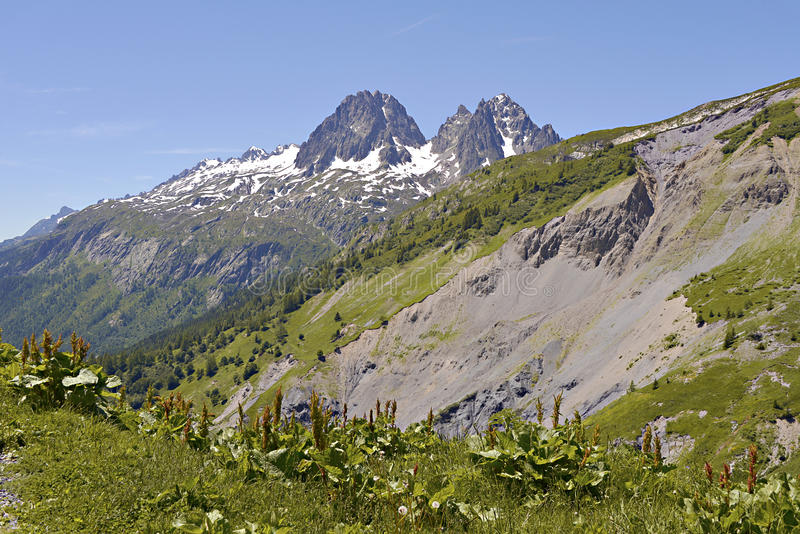 Mountain at Charamillon. Which depends on the commune Le Tour 1462m near of Chamonix in the French Alps in the Haute-Savoie department of France. In the stock photos