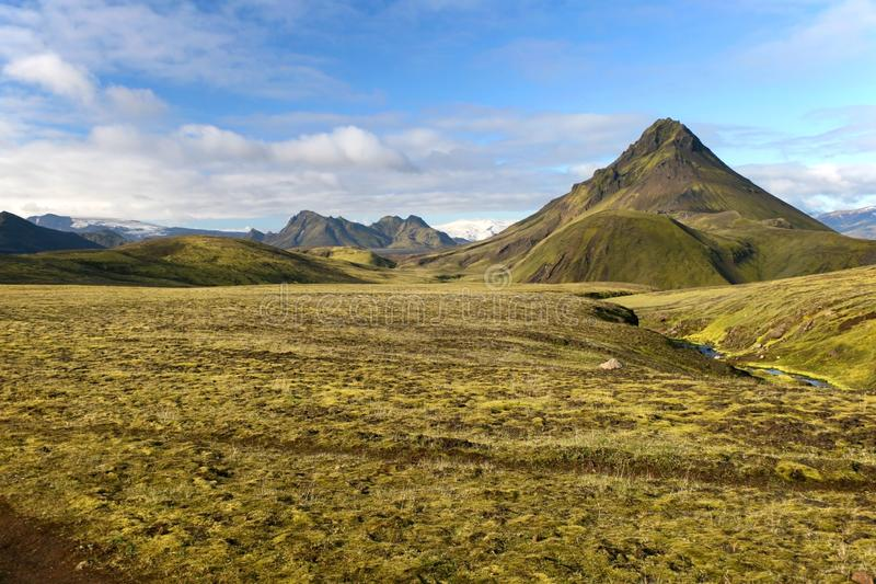 Mountain covered by green moss in Landmannalaugar National Park, Iceland. Mountain in Landmannalaugar with green moss covering the valley, Landmannalaugar stock image