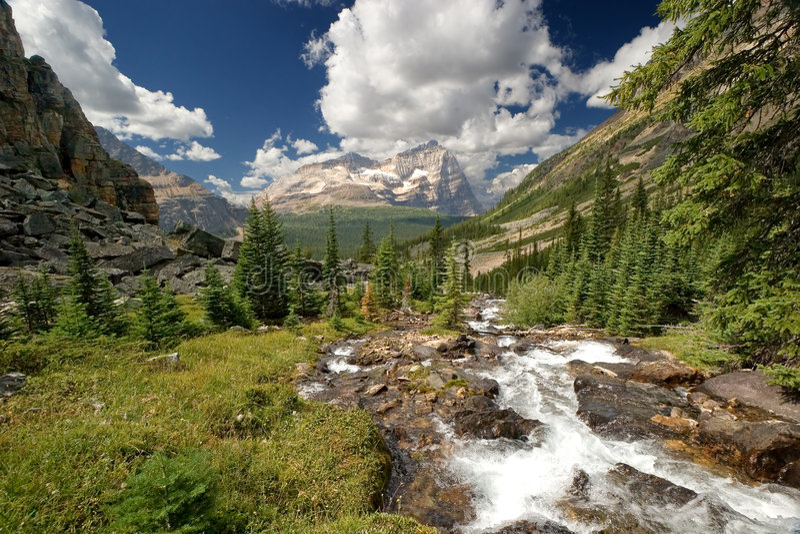 Mountain creek royalty free stock photos