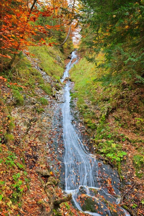Download Mountain Creek Stock Image - Image: 18711651